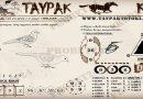 TAYPAK TOTOKL 3569
