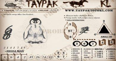 TAYPAK TOTOKL 3571